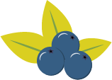 blueberry_highland_pyo2x