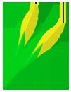 corn_highland_pyo2x-copy